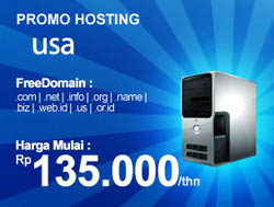 Promo Hosting USA Free Domain